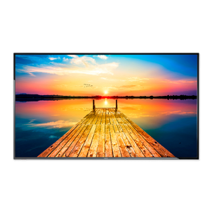 """NEC E506 50"""" LED Backlit Display with Integrated ATSC/NTSC Tuner"""