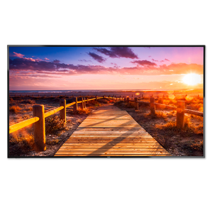 """NEC E656 65"""" LED Backlit Display with Integrated ATSC/NTSC Tuner"""