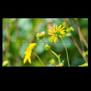 "55"" Ultra Narrow Bezel S-IPS 2x2 Video Wall Solution"